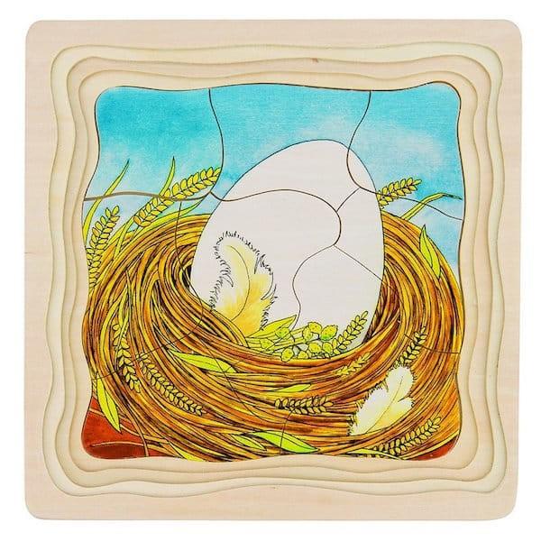 Večplastna sestavljanka - Kako zraste kokoška?